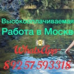 ВЫСОКООПЛАЧИВАЕМАЯ РАБОТА В МОСКВЕ!!!